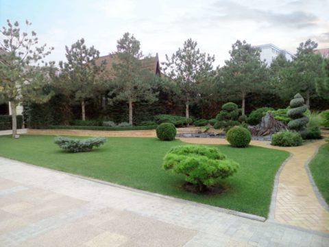 Озеленение участка в загородном доме