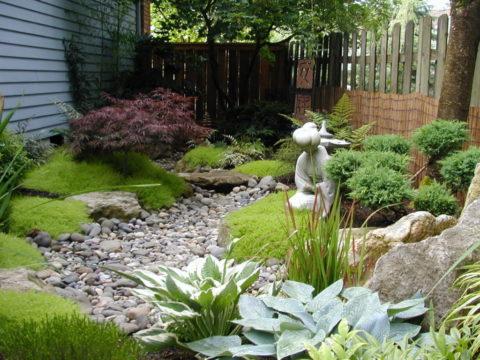 «Сухие» сады в ландшафтном дизайне