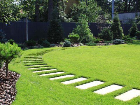 О газонах в саду