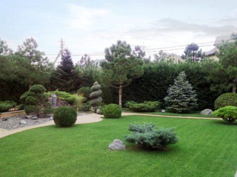 Озеленение и благоустройство участка, ул. Баварская в Немецкой деревне