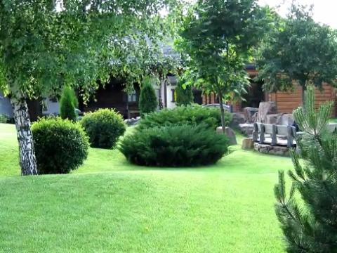 Озеленение участка ул. Ягодная