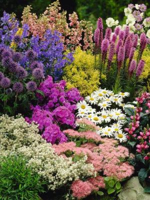 Цветники и розарии