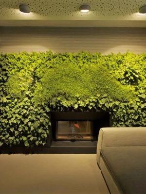 Интерьерное озеленение